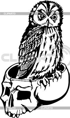 Skull and owl | Klipart wektorowy |ID 2018415