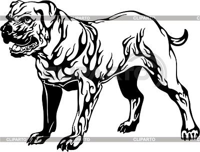 Dog flame | Klipart wektorowy |ID 2015753