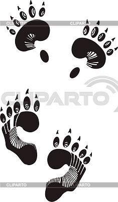 Spuren vom Braunbär | Stock Vektorgrafik |ID 2025062