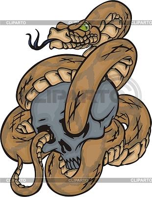Schlange und Schädel | Stock Vektorgrafik |ID 2022879