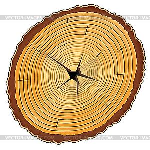 Holz-Querschnitt - Vektor-Klipart