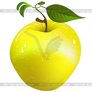 Frischer Apfel - vektorisiertes Clipart