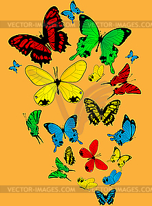 Farbige Schmetterlinge - Vector-Design