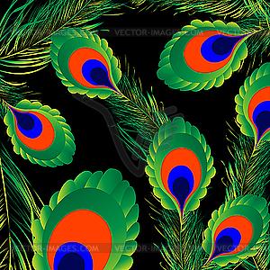 Hintergrund aus Pfauenfedern - vektorisiertes Bild