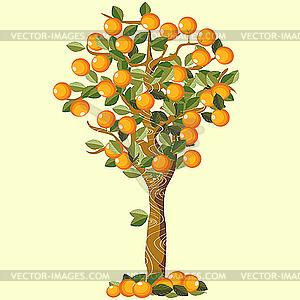 color orange trees