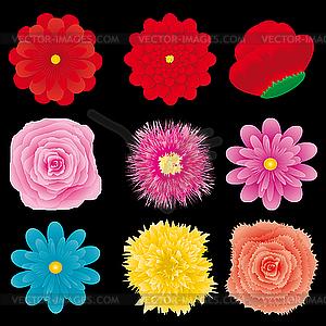 Blumen-Dingbats - Vektor-Klipart