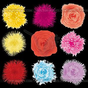 Blumen-Dingbats - Vektor-Clipart / Vektorgrafik