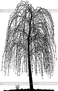 Baumsilhouette  - Clipart-Bild