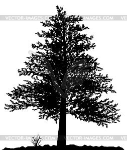 Baumsilhouette  - Vektorgrafik