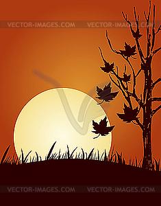 Herbst - vektorisierte Abbildung