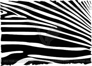Zebra-Hintergrund - vektorisiertes Design