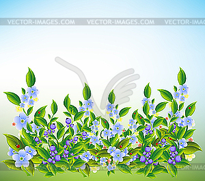 Летние синие луговые цветы цветной