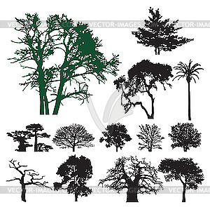 Baum-Silhouetten - Vektor-Clipart EPS