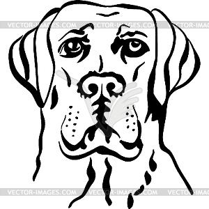 Hunderasse Labrador Retriever - Vektor-Klipart