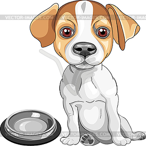 Sketch dog Jack Russell Terrier breed - vector clip art