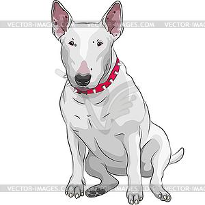 Bull Terrier Hund sitzt - Stock Vektor-Bild