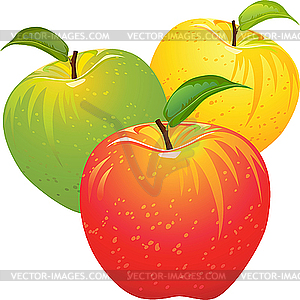 farbige  u00c4pfel royalty free clipart free clipart of apple hill free clipart of apple outline
