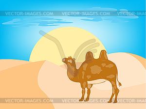 Kamel in der Wüste - Vektor-Clipart EPS
