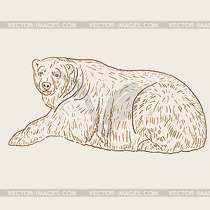 White Polar Bear.. - vektorisiertes Design