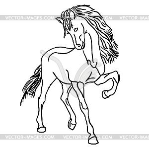 Schwarzes Pferd - Vector-Bild