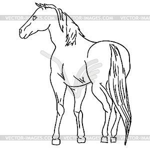 Schwarzweißes Pferd - Vektorgrafik