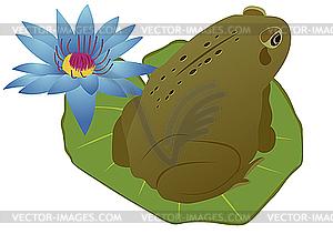 Frosch auf einem Lotusblatt - Stock Vektor-Clipart