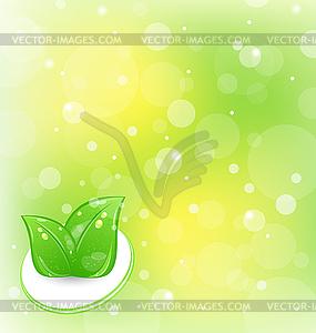 Ökologie - Hintergrund mit Blättern - Vektorgrafik-Design