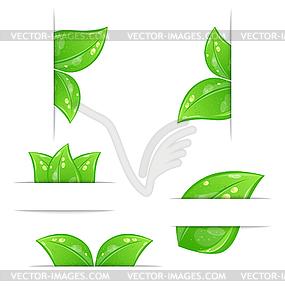 Reihe von grünen Öko-Labels mit Blättern bac - Vector-Design