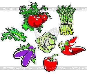 Овощи коллекции - векторный рисунок