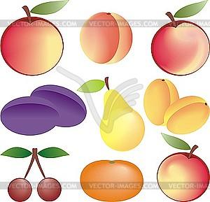 Früchte - Vektor-Clipart / Vektor-Bild