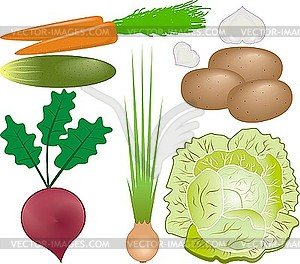 Овощи клипарт в векторном формате