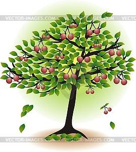 Obstbaum mit Blättern und Kirschen - Vector-Clipart / Vektor-Bild