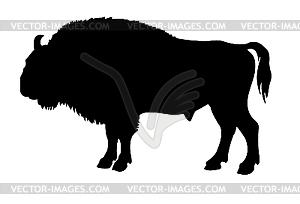 Silhouette des Büffels - Vector-Design