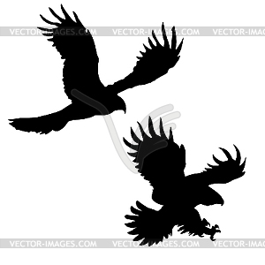 Silhouetten des gefräßigen Vögeln - vektorisierte Abbildung