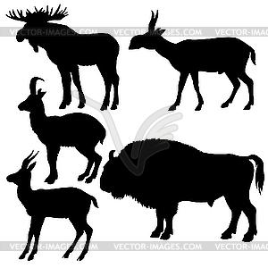 Silhouetten der wilden Tieren - Vector-Clipart / Vektor-Bild