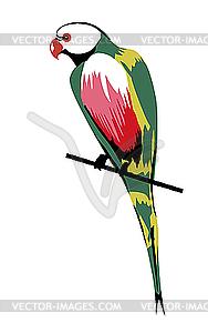 Papagei - vektorisiertes Clip-Art