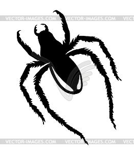 Silhouette Spinne - Clipart-Bild