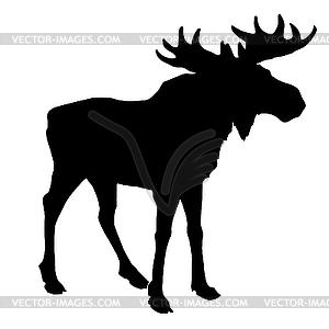 Silhouette eines Elches - Vector-Bild