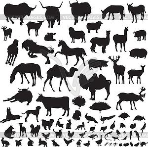 Silhouetten von Tieren - Stock-Clipart