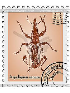 Stempel mit Käfer - farbige Vektorgrafik