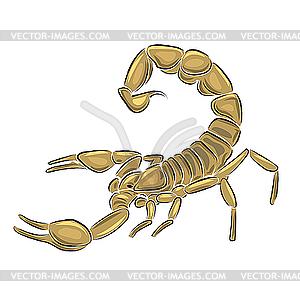 Skorpion - vektorisiertes Clipart