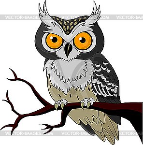 Night Owl - vector clip art