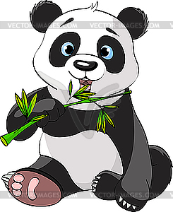 Panda ißt Bambus - Stock Vektor-Bild