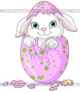 Osterhase-Baby ist von einem Ei geschlüpft - Vektor-Clipart / Vektor-Bild