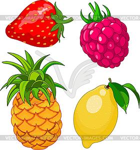 Set von Früchten und Beeren - Vektor-Illustration