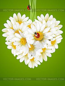 Blumen Liebe Karte (Kamille Herz) - Vektor-Clipart EPS
