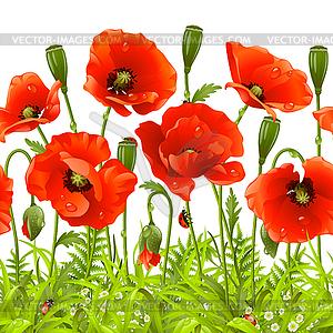 Rote Blumen und grünes Gras - Vektorgrafik-Design