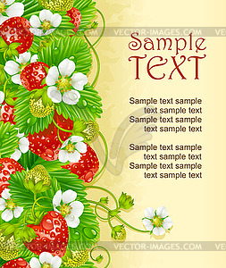 Rahmen von Erdbeeren. Rote Beeren und weiße Blumen - Vector-Bild