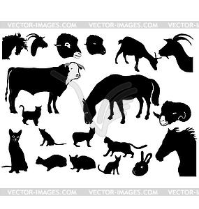 Set mit Silhouetten von Haustieren - vektorisiertes Bild