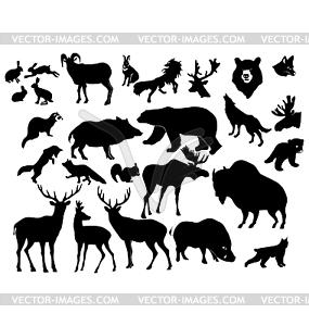 Set von verschiedenen Waldtieren - Royalty-Free Vektor-Clipart